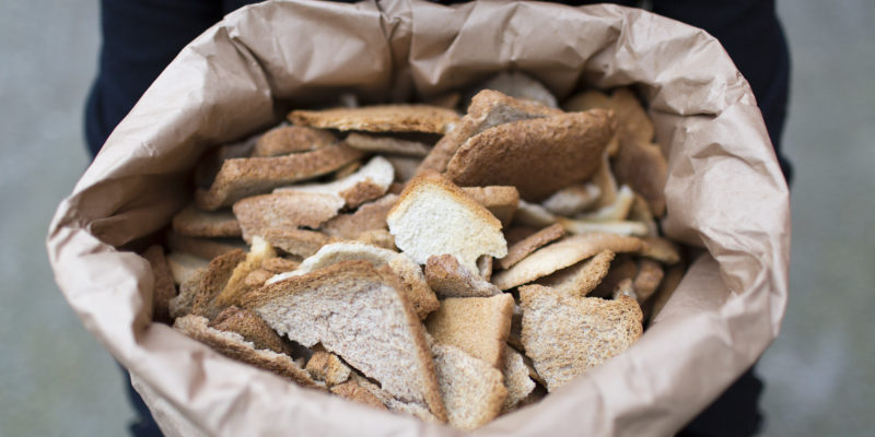 Toast Ale beer_thesquidstories blog 1