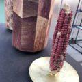 corn skin waste